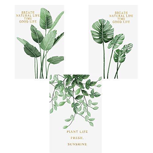 Nicole Knupfer 3er Set Poster Wandbilder,Grüne Monstera Blätter Bilder,Wand Deko für Wohn-Schlafzimmer, Wandposter Posterset Ohne Rahmen (C,40x50cm)