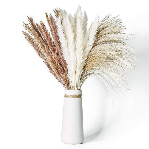 Janice Ky 60Stck Natürliche Pampasgras Getrocknet Mit 3 Flauschige und Schwungvolle Trockenblumen Bodenvase Getrocknete Blumenfür Hochzeit Blumenarrangements Home Décor