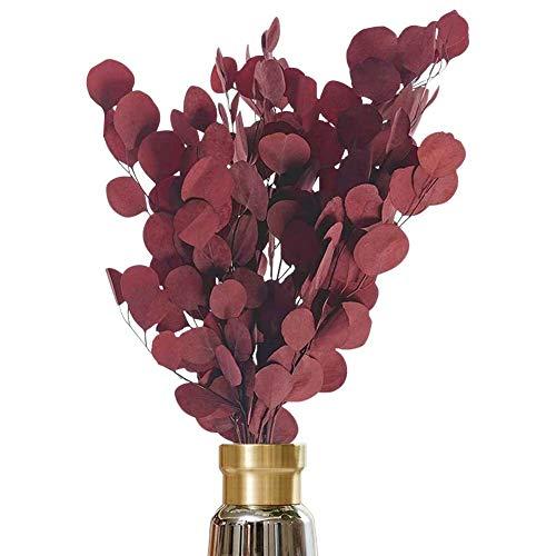 AideMeng Hochwertige Trockenblumen Eukalyptus zur Dekoration – Schleierkraut getrocknet als Kunstblume zur Verschönerung der Wohnung - Kunstpflanze in natürlicher Optik (Rot)