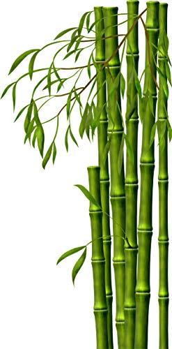 wandmotiv24 Wandsticker Bambus Wald, Asien, Grün, Natur, Pflanze S - klein 30x61cm Wand-Aufkleber, Sticker, Wand-Bild, Deko Bilder, Dekoration Wohnung modern WS00000146