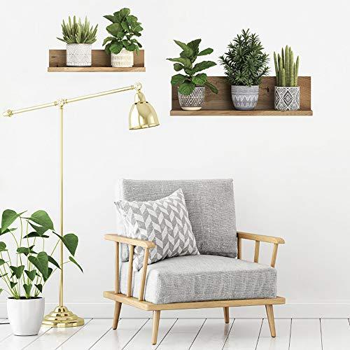 Grüne Pflanze Wandtattoo Wandsticker, Entfernbarer PVC Bonsai Wandaufkleber, Kreative Wanddekoration für Dekor Kinder Kinderzimmer Baby Home Wohnzimmer Schlafzimmer Küche (22,4 x 21,2 Zoll)