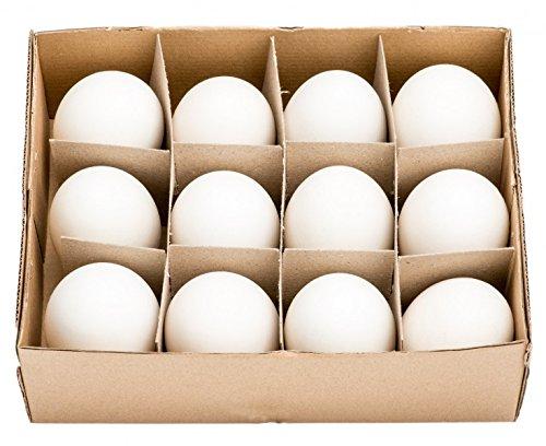 NaDeco Gänseeier groß im Karton mit 12 Stück echte ausgeblasene Gänseeier Gänse Eier Osterdeko Osterdekoration Ostereier Dekoeier