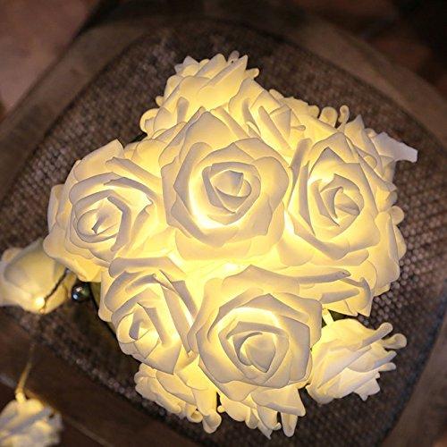 CozyHome LED Lichterkette Rosen weiß – 5m strombetrieben   20 Blumen warmweiß   Rosenlichterkette Strom   Tumblr Deko für: Mädchen Schlafzimmer, Hochzeit, Schminktisch   Rose Lichterketten mit Stecker