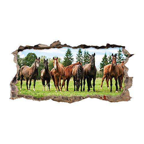 nikima - 125 Wandtattoo Pferde Braun Koppel Wiese - Loch in der Wand - in 6 Größen - Wunderschöne Kinderzimmer Sticker Aufkleber Bezaubernde Wanddeko Wandbild Mädchen - Größe 1000 x 500 mm