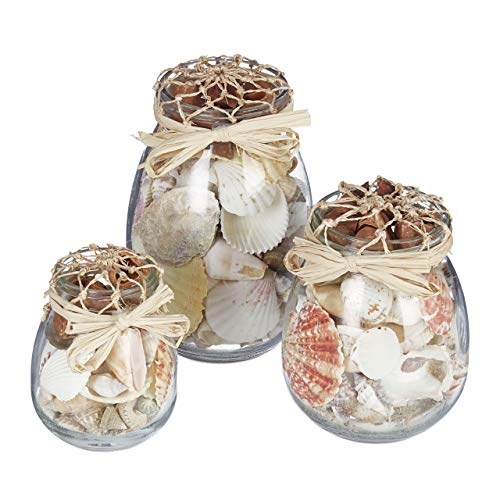 Relaxdays Muschel Deko, 3er Set, echter Muschel-Mix, verschieden große Gläser, maritim, Badezimmer Dekoration, natur
