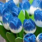 Tulpen - Deko in Blau