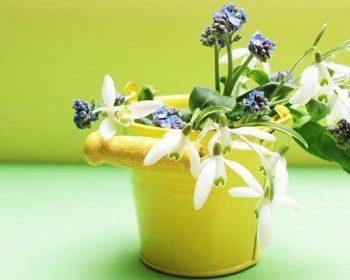 Deko in Gelb mit Blumen