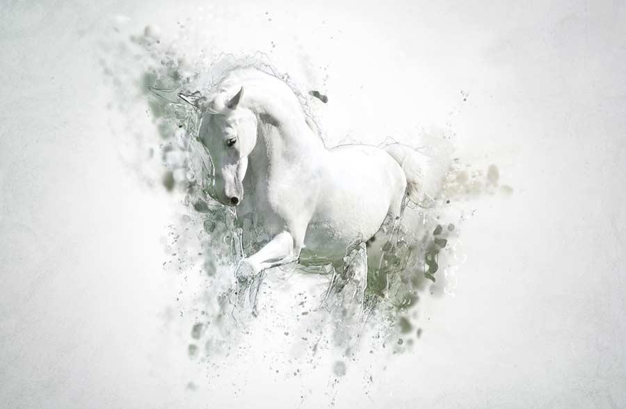 Wandtattoo-Pferd © depositphotos.com
