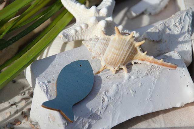 Maritime Deko aus Muscheln und Dekofischen